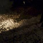 zoth-ommog-festival-lights-of-euphoria-11