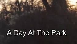 A Day At The Park Video