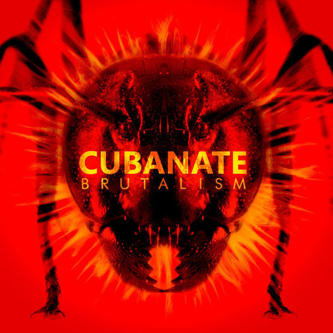 Cover der Cubanate Compilation