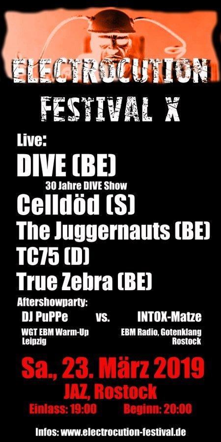 Flyer: Electrocution Festival X
