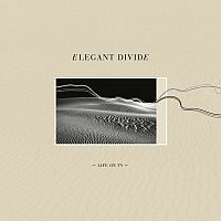 Cover: Elegant Divide