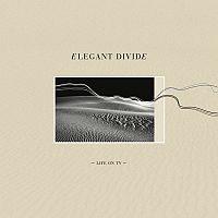 Cover: Elegant Divide