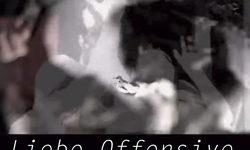 Video: Liebe Offensive