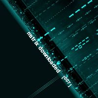 Cover: Matrix Downloaded 007
