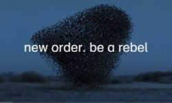 Artikelgrafik: Be A Rebel